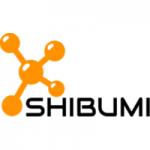 Shibumi-AI